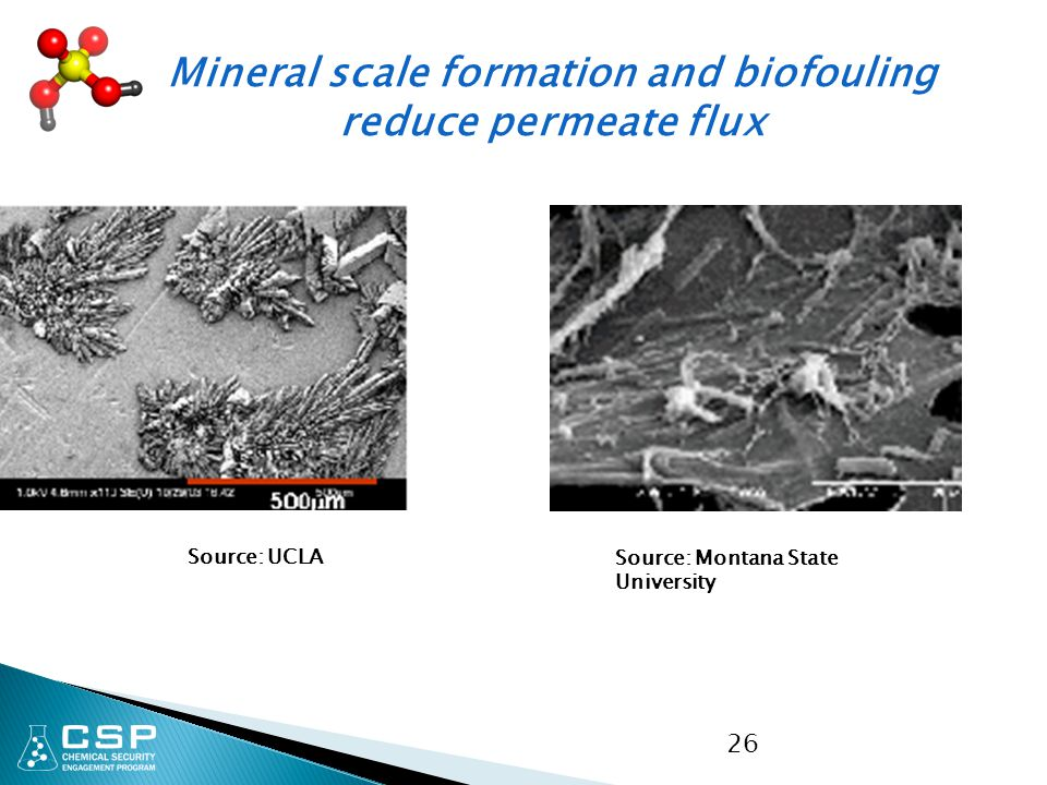 Mineral scale formation and biofouling reduce permeate flux