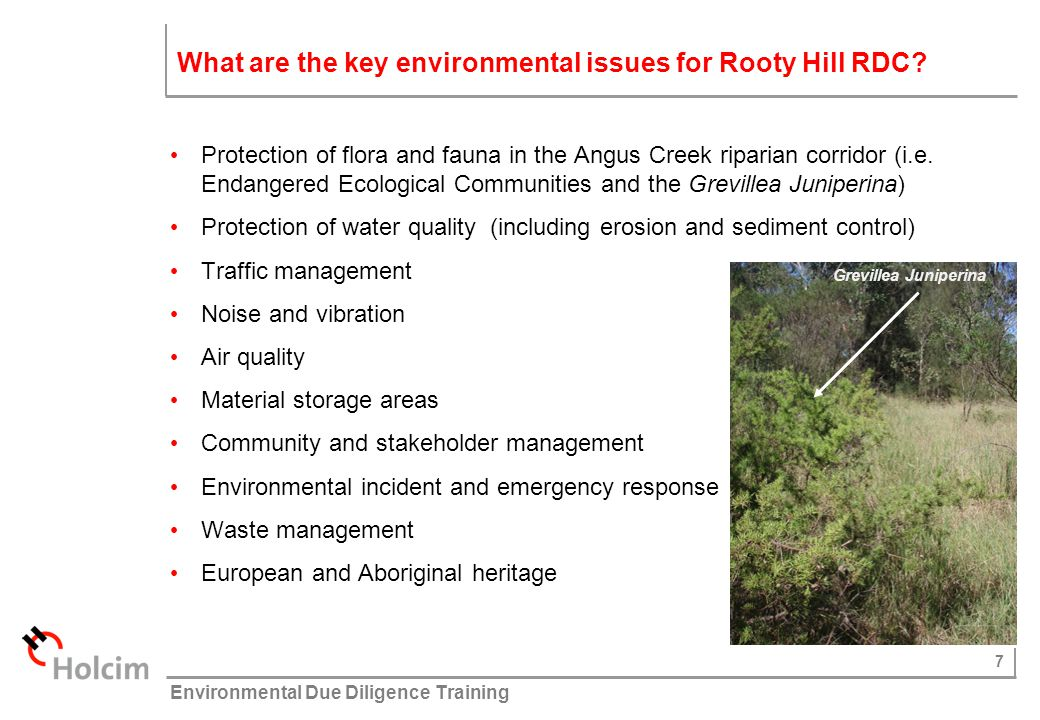 What are the key environmental issues for Rooty Hill RDC
