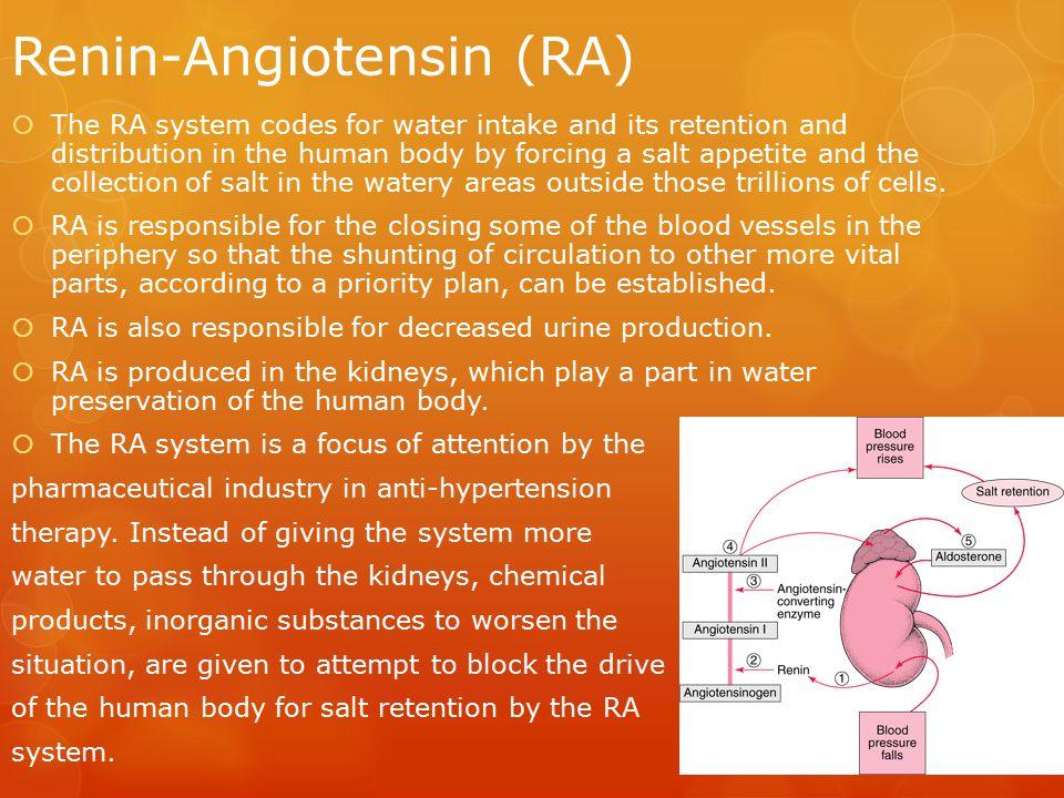 Renin-Angiotensin (RA)