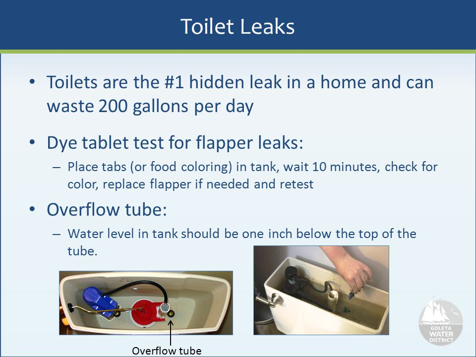 Toilet Leaks Toilets are the #1 hidden leak in a home and can waste 200 gallons per day. Dye tablet test for flapper leaks:
