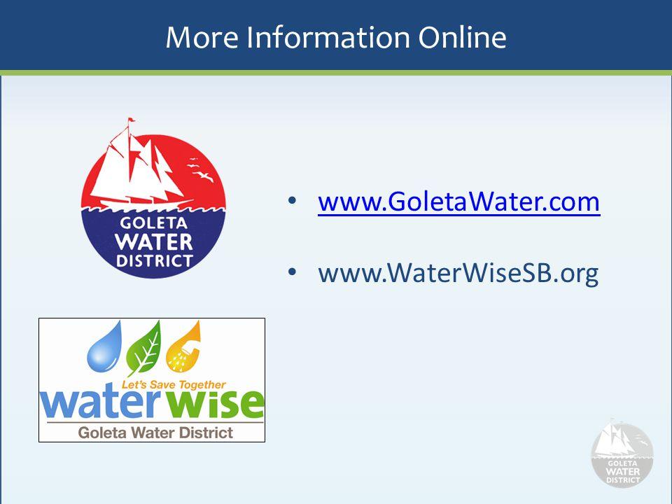 More Information Online