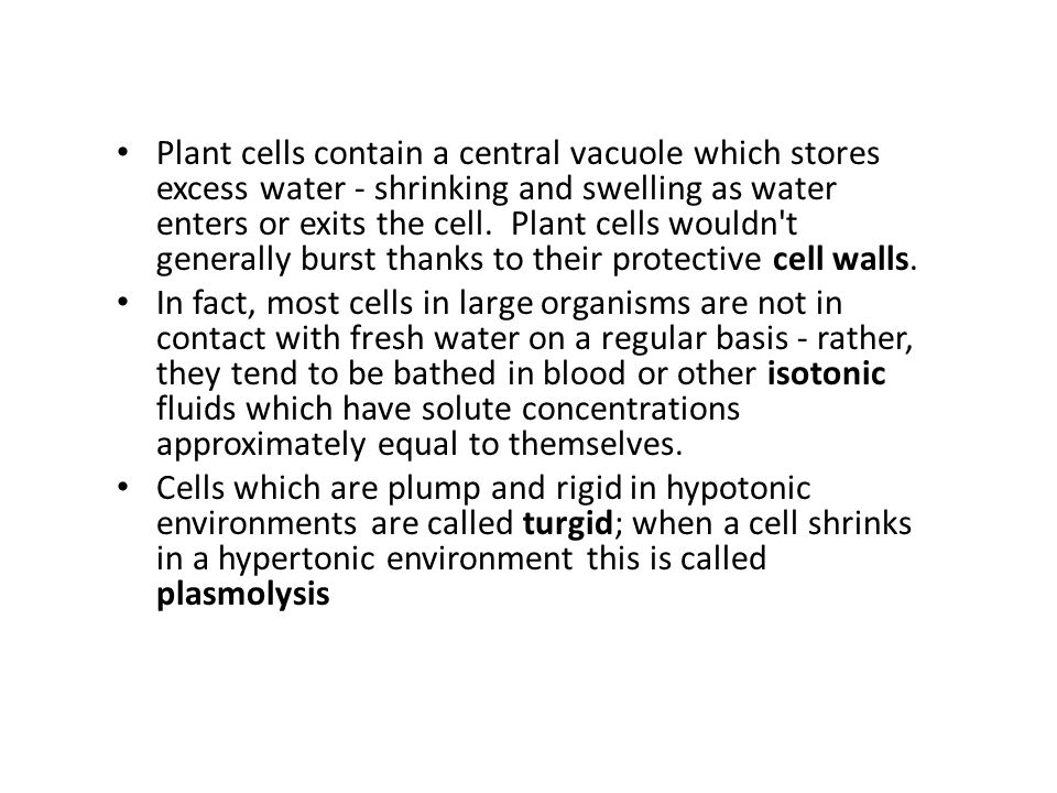 Plant cells contain a central vacuole which stores excess water - shrinking and swelling as water enters or exits the cell. Plant cells wouldn t generally burst thanks to their protective cell walls.