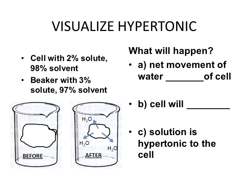 VISUALIZE HYPERTONIC What will happen