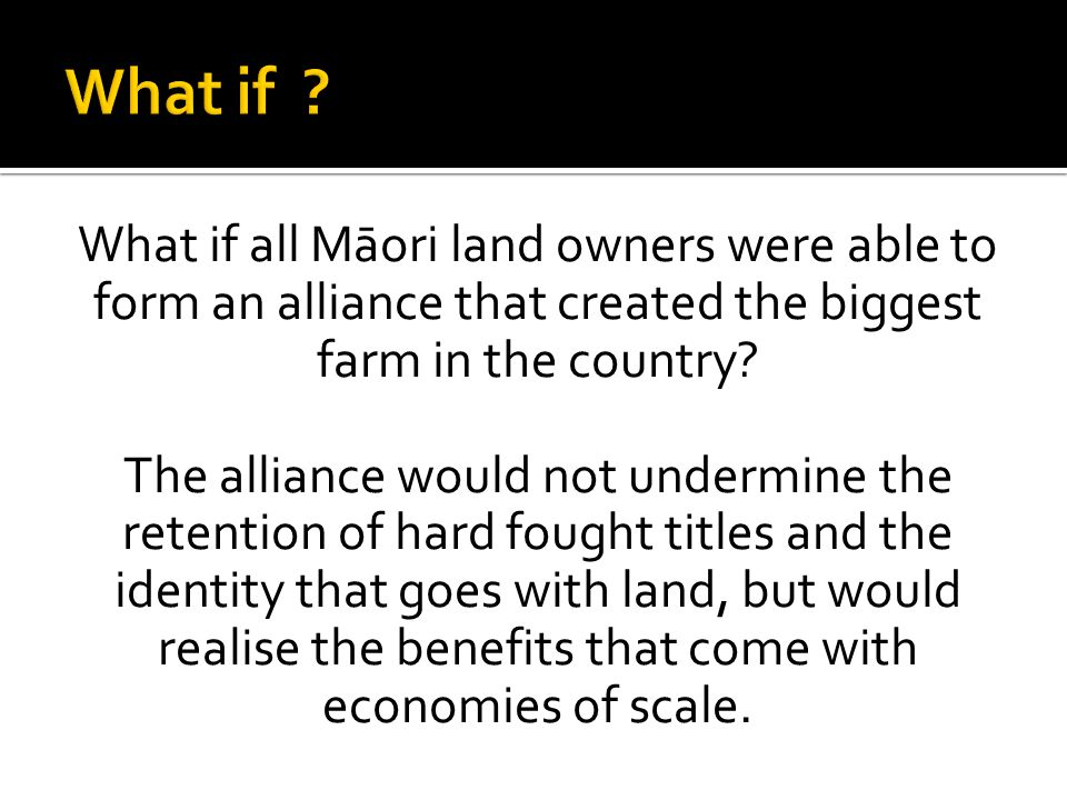 What if What if all Māori land owners were able to form an alliance that created the biggest farm in the country