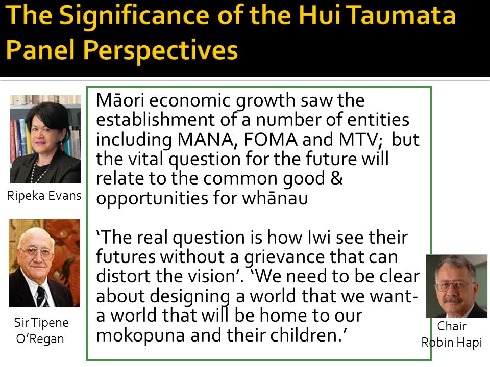 The Significance of the Hui Taumata Panel Perspectives