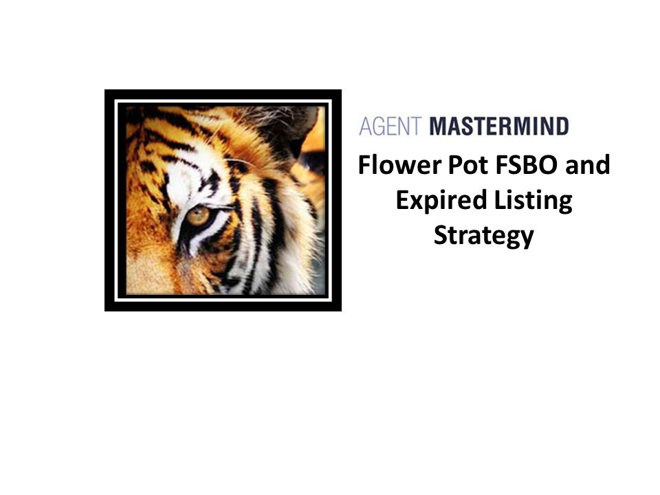 Flower Pot FSBO and Expired Listing Strategy
