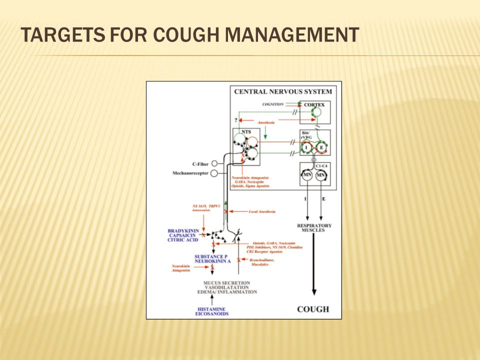 Targets for Cough Management
