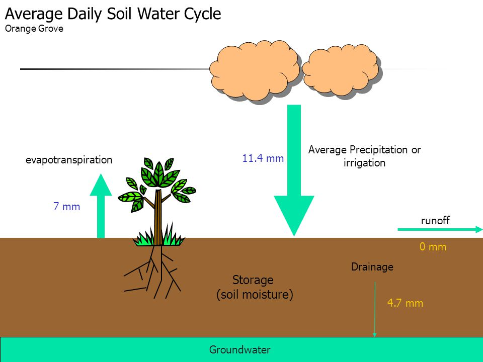 Average Precipitation or irrigation