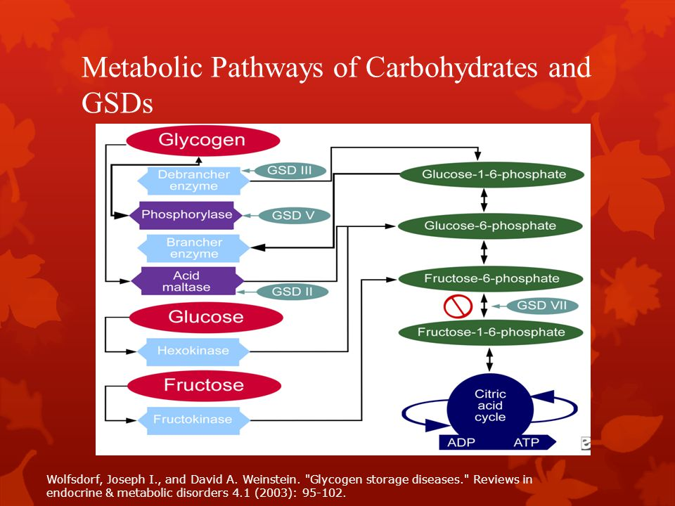 Metabolic Pathways of Carbohydrates and GSDs