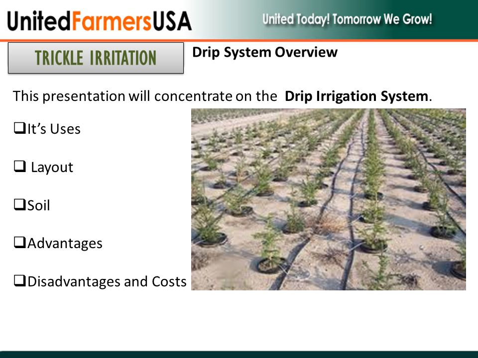 TRICKLE IRRITATION Drip System Overview
