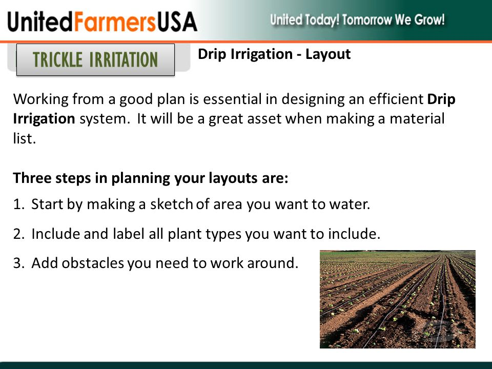 TRICKLE IRRITATION Drip Irrigation - Layout
