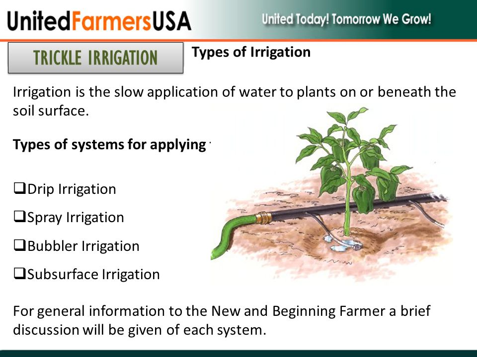 TRICKLE IRRIGATION Types of Irrigation