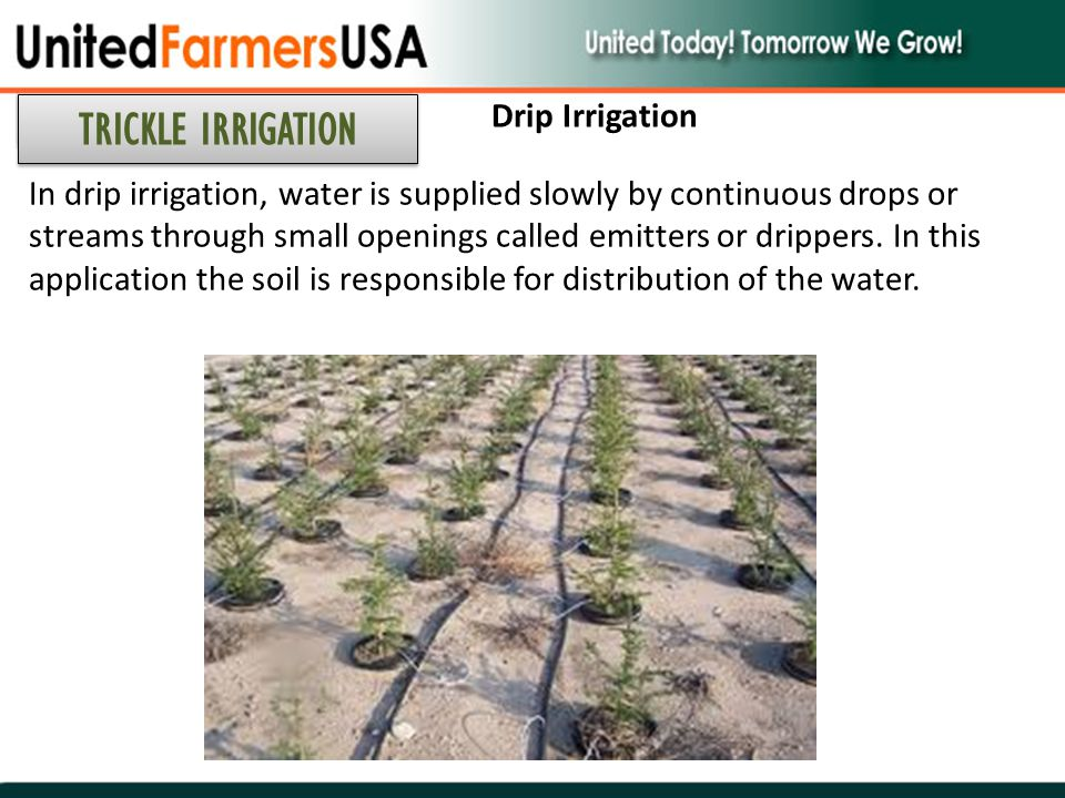 TRICKLE IRRIGATION Drip Irrigation