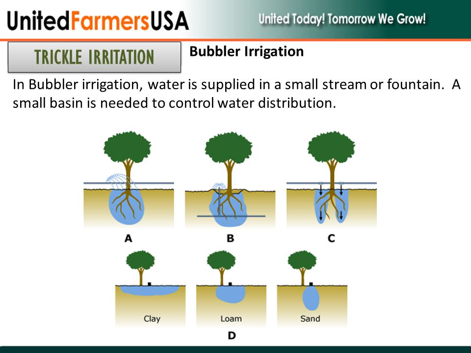TRICKLE IRRITATION Bubbler Irrigation