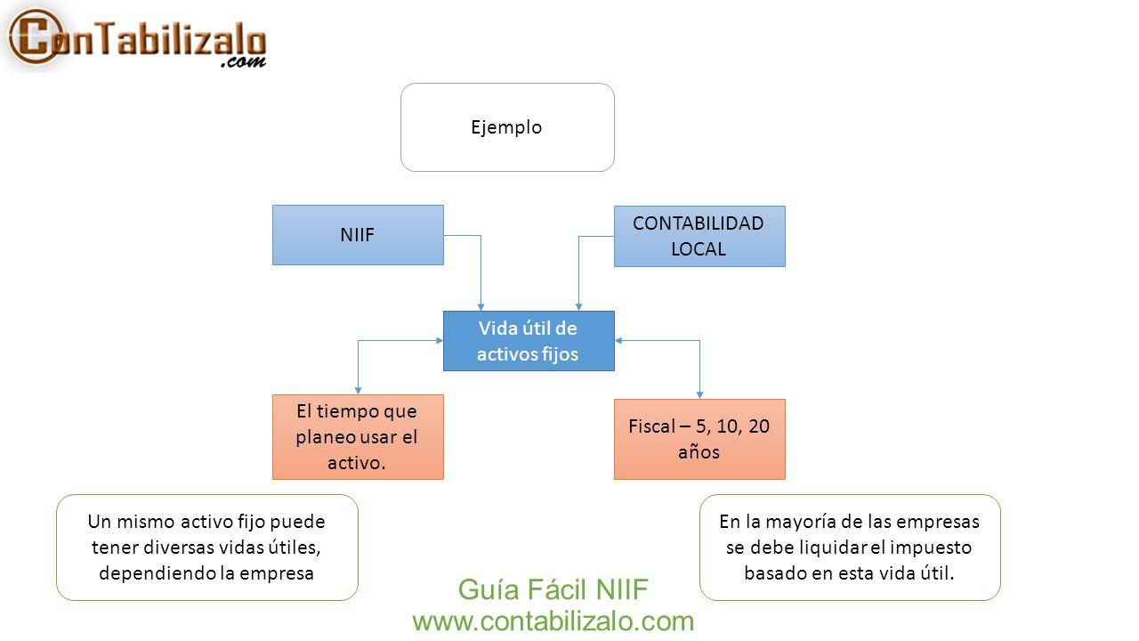 Guía Fácil NIIF www.contabilizalo.com