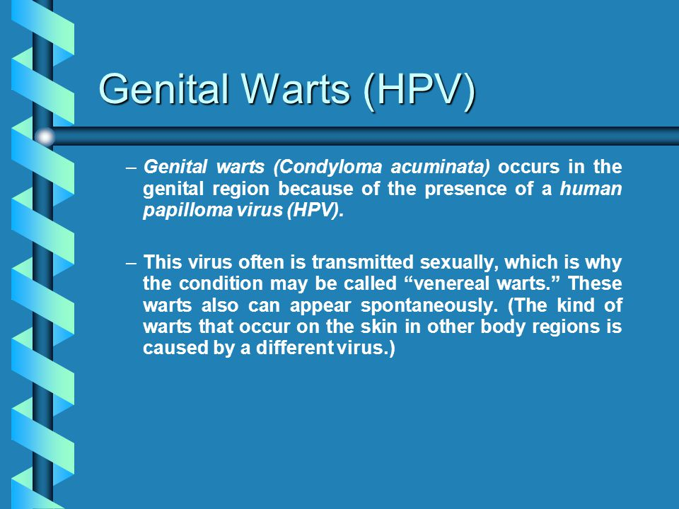 Genital Warts (HPV) Genital warts (Condyloma acuminata) occurs in the genital region because of the presence of a human papilloma virus (HPV).