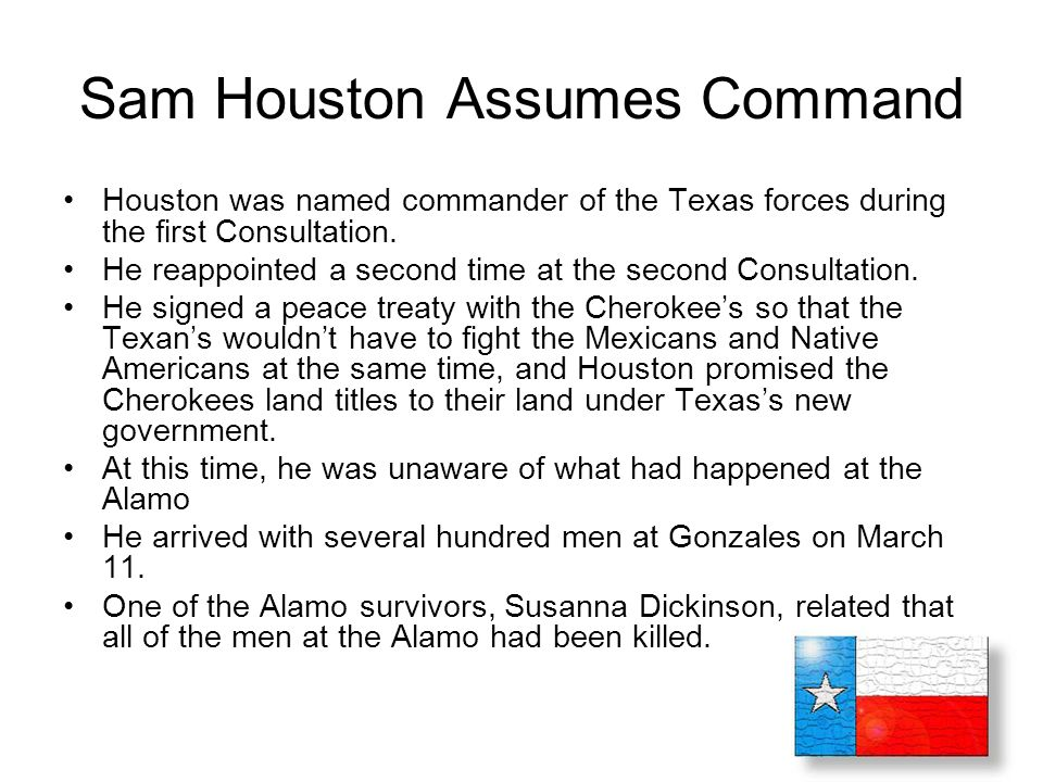 Sam Houston Assumes Command