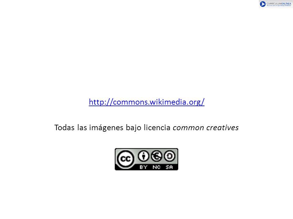 Todas las imágenes bajo licencia common creatives