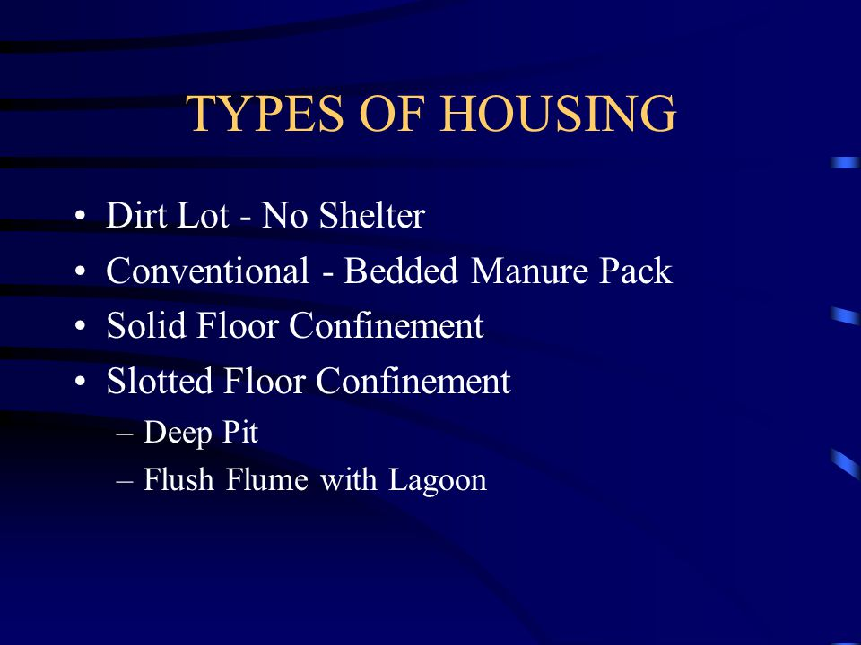 TYPES OF HOUSING Dirt Lot - No Shelter