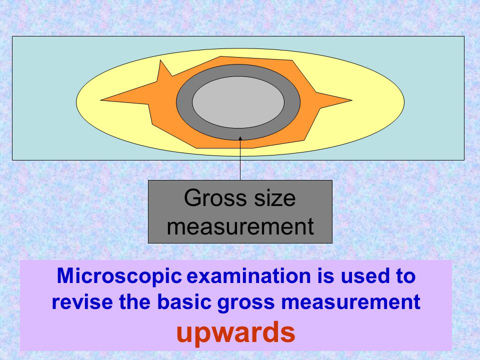 Gross size measurement