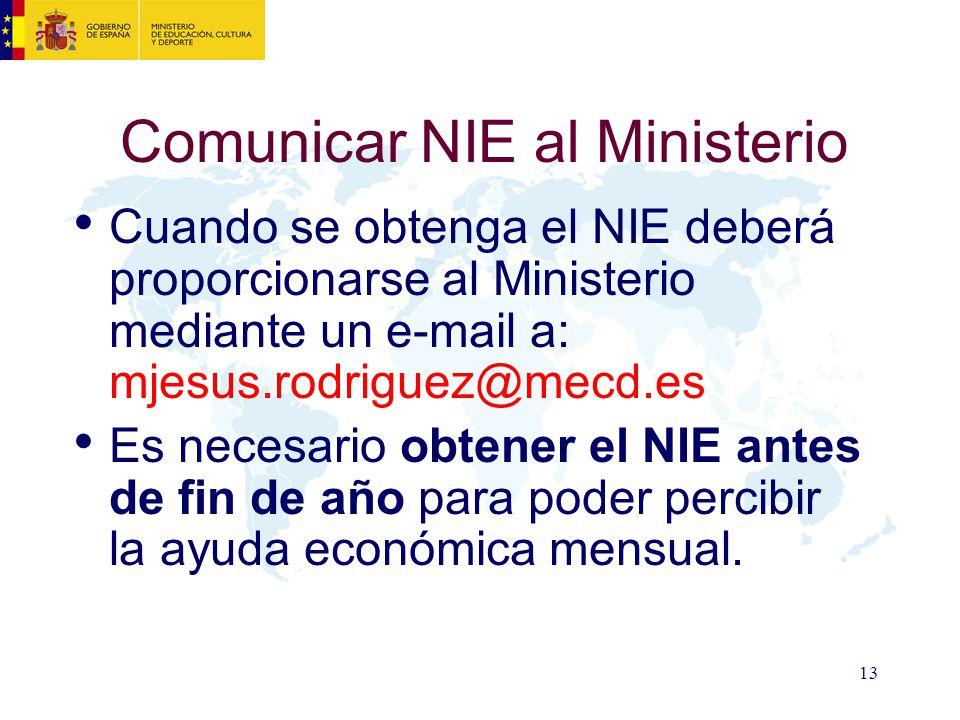 Comunicar NIE al Ministerio
