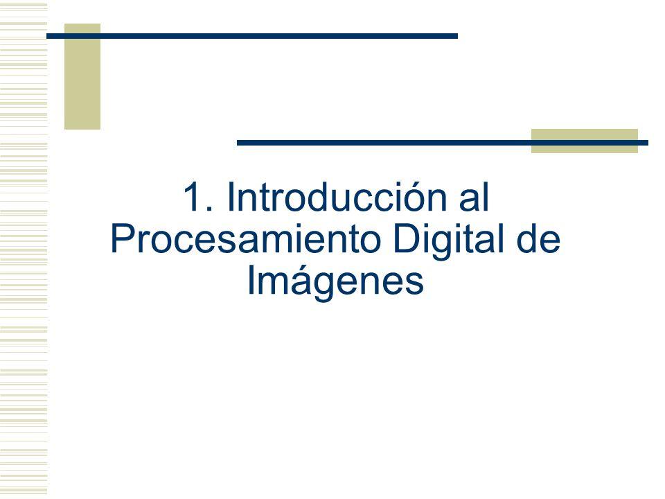 1. Introducción al Procesamiento Digital de Imágenes