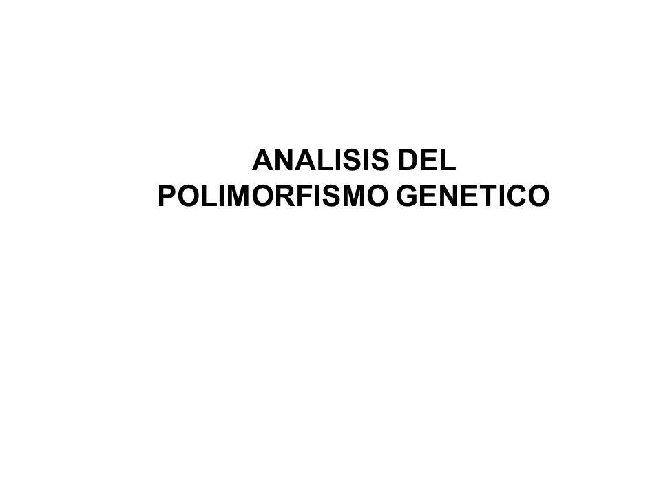 ANALISIS DEL POLIMORFISMO GENETICO