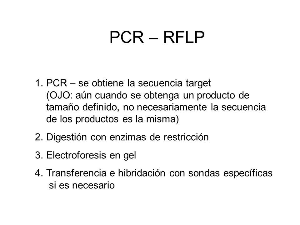 PCR – RFLP