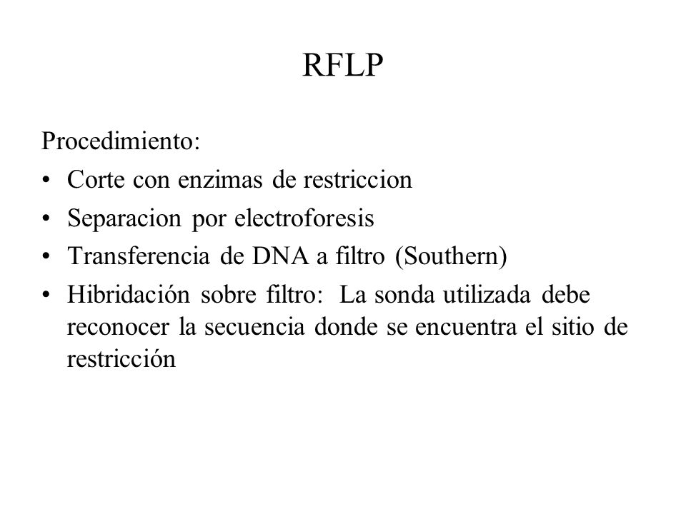 RFLP Procedimiento: Corte con enzimas de restriccion