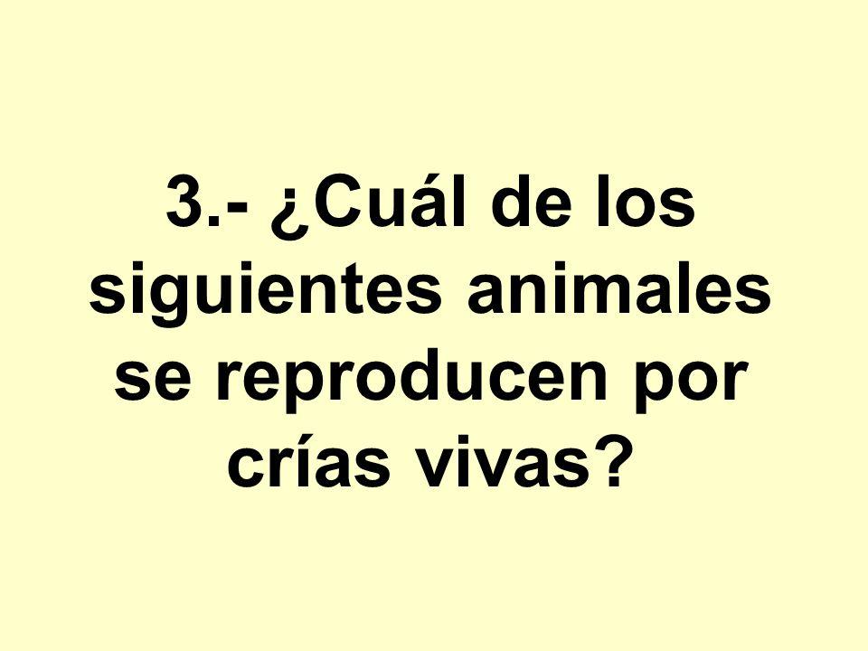 3.- ¿Cuál de los siguientes animales se reproducen por crías vivas