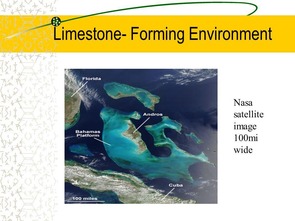 Limestone- Forming Environment