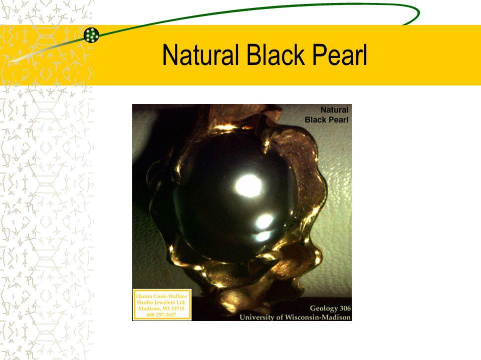 Natural Black Pearl