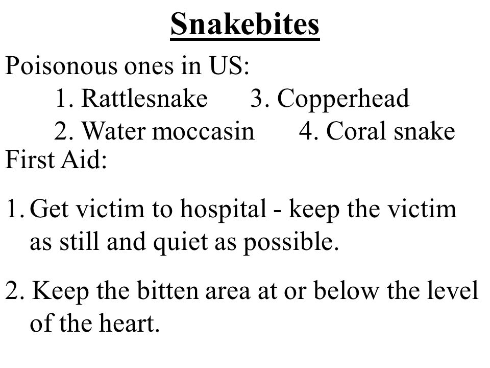 Snakebites Poisonous ones in US: