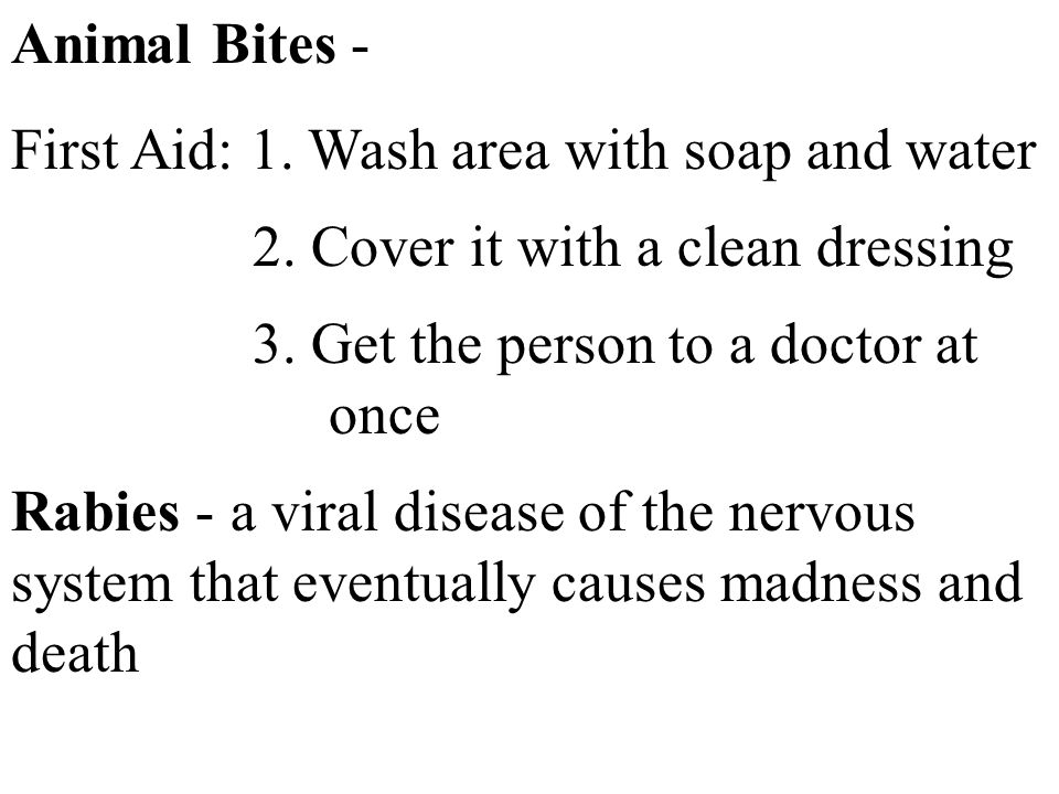 Animal Bites - First Aid: 1. Wash area with soap and water. 2. Cover it with a clean dressing. 3. Get the person to a doctor at once.