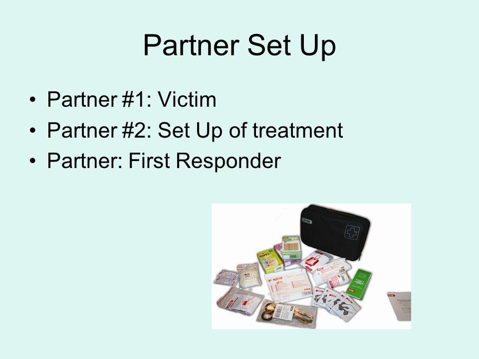 Partner Set Up Partner #1: Victim Partner #2: Set Up of treatment