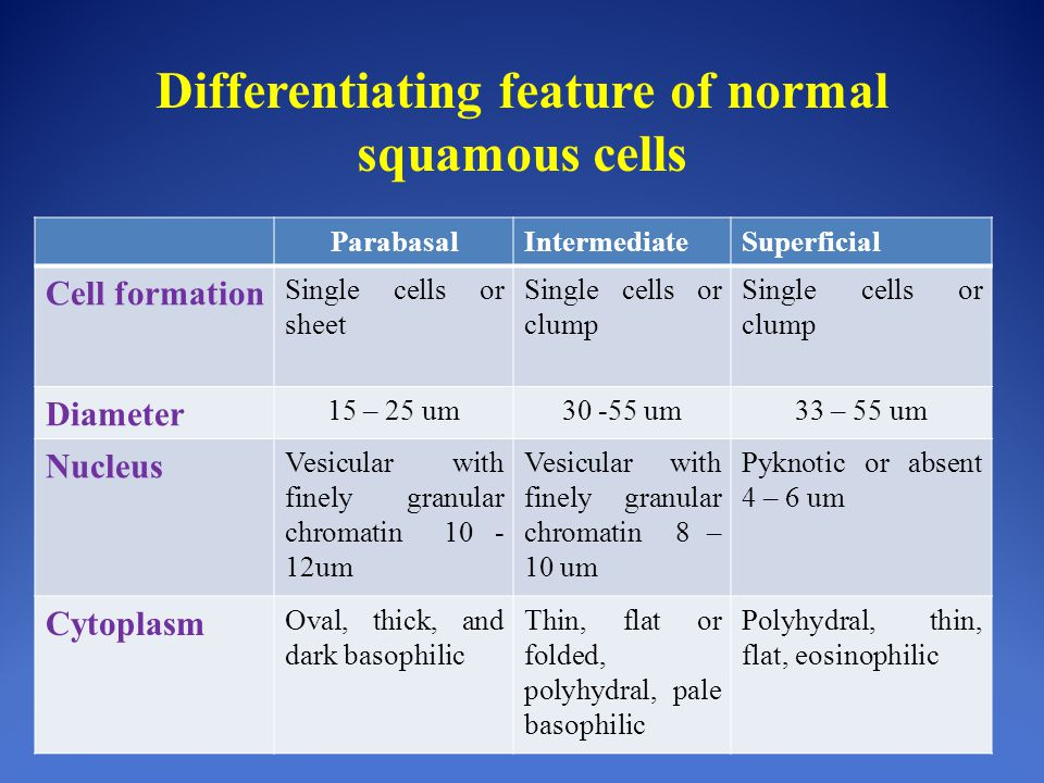 Differentiating feature of normal squamous cells