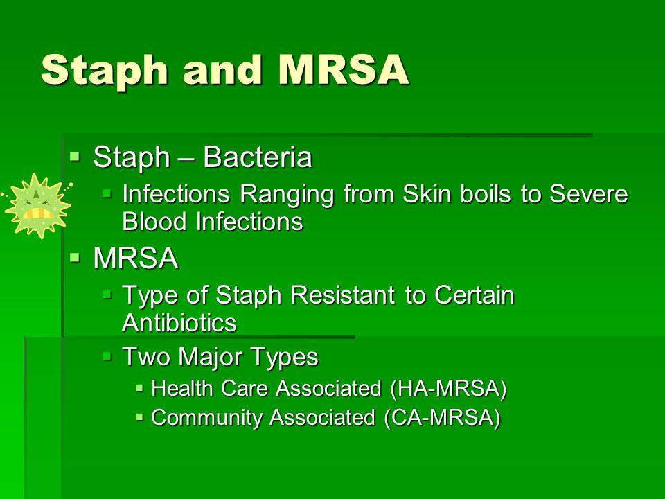 Staph and MRSA Staph – Bacteria MRSA