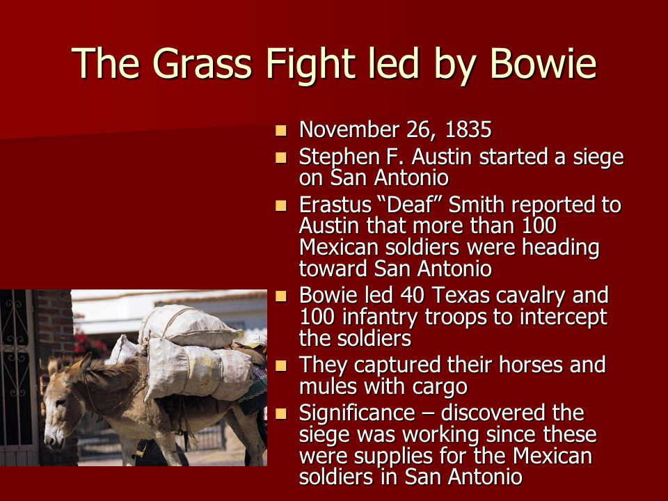 The Grass Fight led by Bowie