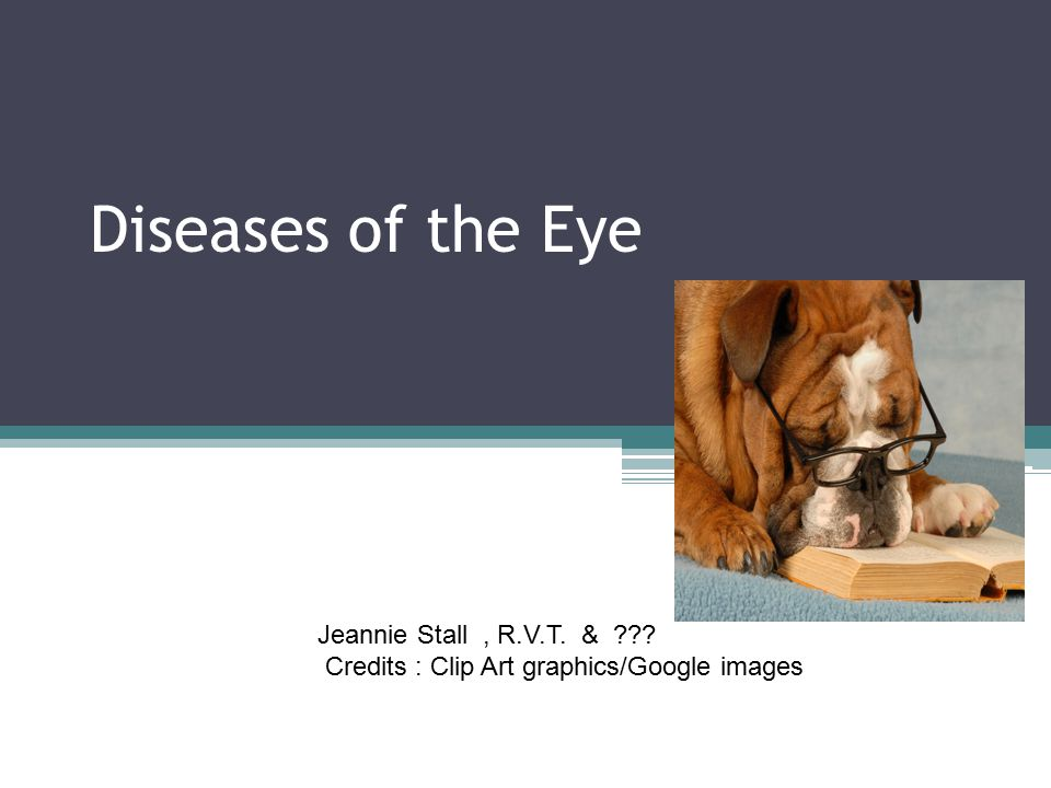 Diseases of the Eye Casey Conway Jeannie Stall , R.V.T. &
