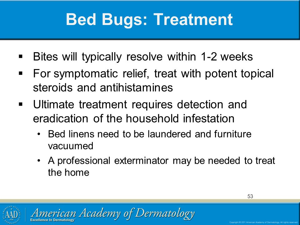 Bed Bugs: Treatment Bites will typically resolve within 1-2 weeks
