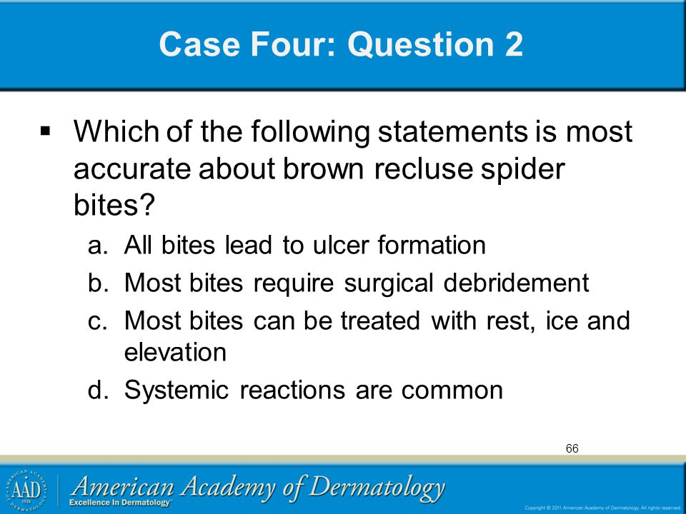 Case Four: Question 2 Which of the following statements is most accurate about brown recluse spider bites