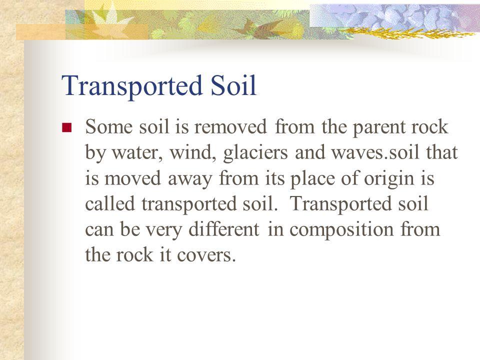 Transported Soil