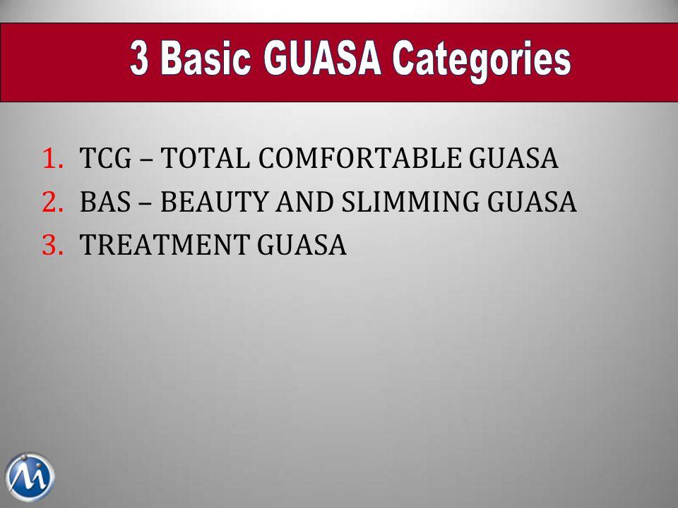 3 Basic GUASA Categories
