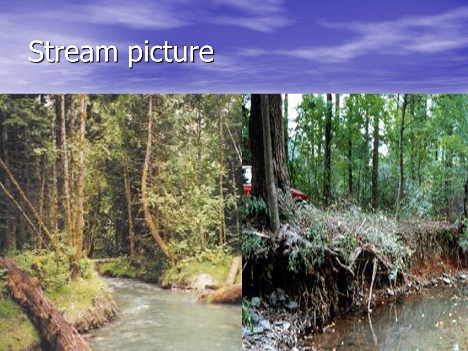 Stream picture