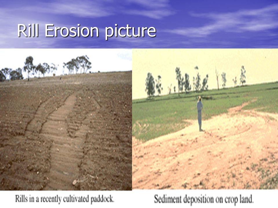 Rill Erosion picture