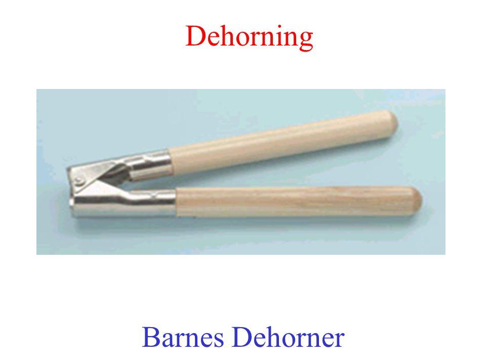 Dehorning Barnes Dehorner
