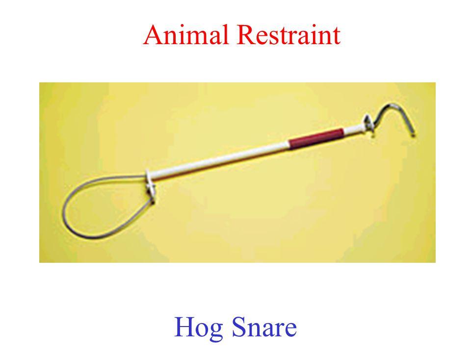Animal Restraint Hog Snare