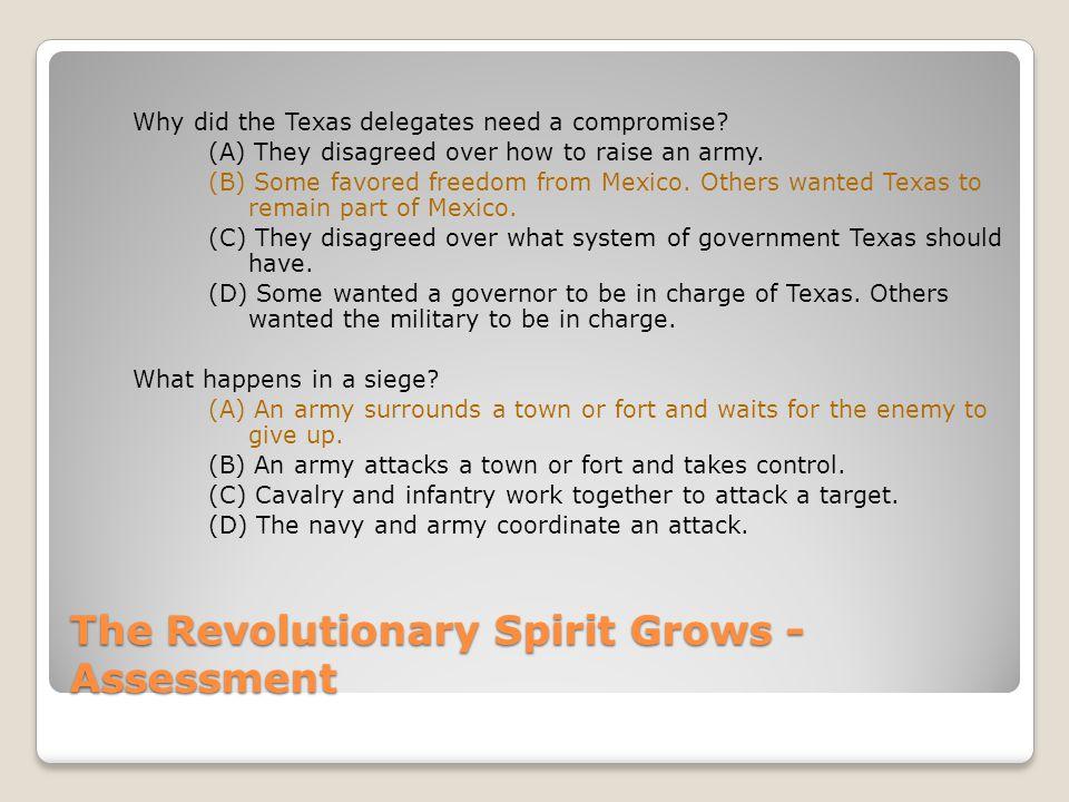 The Revolutionary Spirit Grows - Assessment