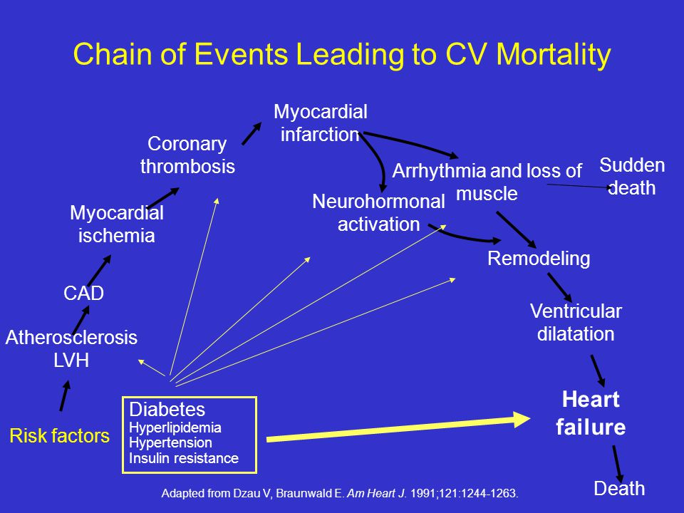 Chain of Events Leading to CV Mortality
