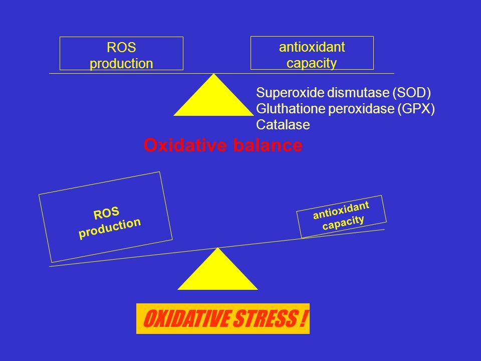 OXIDATIVE STRESS ! Oxidative balance ROS antioxidant production